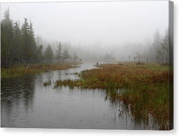 Foggy Marsh Near Jordan Pond Canvas Print by Juergen Roth