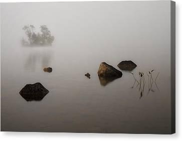Maine Winter Canvas Print - Foggy Morn by Darylann Leonard Photography