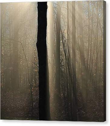 Canvas Print featuring the photograph Foggy Mornin' by Paul Noble
