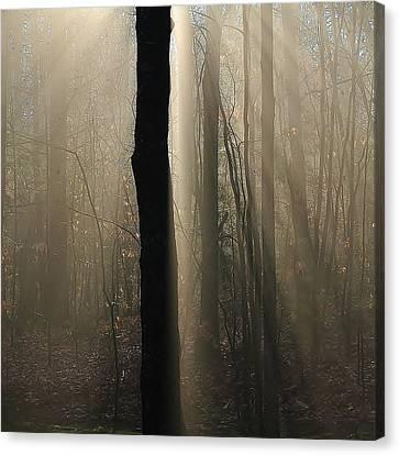 Foggy Mornin' Canvas Print