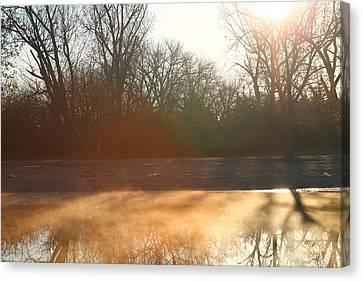 Canvas Print featuring the photograph Foggy Morning by Alicia Knust