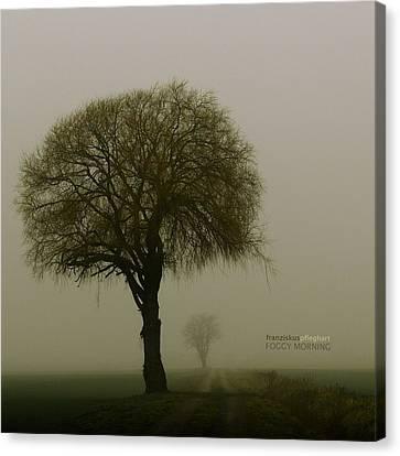 Foggy Day Canvas Print - Foggy Morning by Franziskus Pfleghart