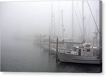 Foggy Morning In Charleston Harbor Canvas Print