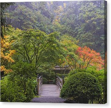 Foggy Morning In Japanese Garden Canvas Print
