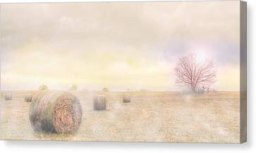 Foggy Morning In Sc Canvas Print by Brent Craft