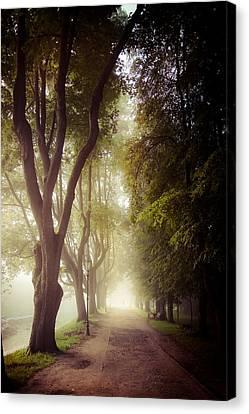 Foggy Morning In The Nesvizh Park Canvas Print by Sviatlana Kandybovich