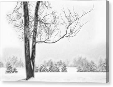 Foggy Morning Landscape - Fractalius 5 Canvas Print by Steve Ohlsen