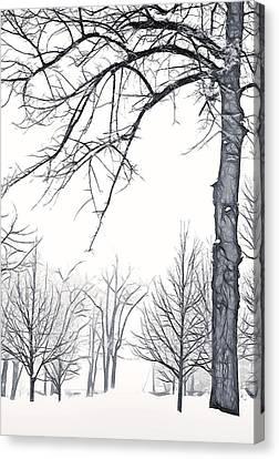 Foggy Morning Landscape - Fractalius 6 Canvas Print by Steve Ohlsen