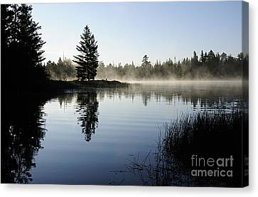 Foggy Morning Canvas Print by Larry Ricker