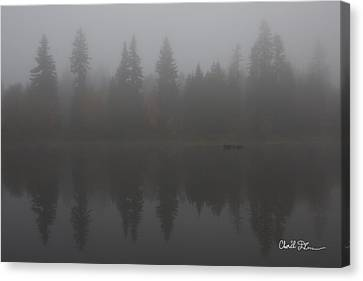 Foggy Morning On The Lake Canvas Print by Charlie Duncan