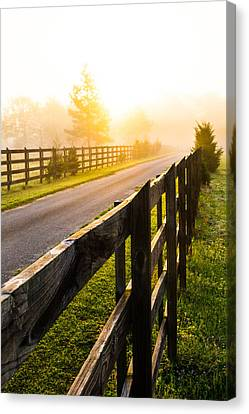 Foggy Morning Canvas Print by Shelby  Young