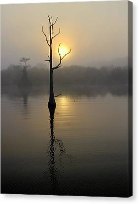 Foggy Morning Sunrise Canvas Print