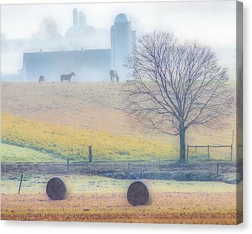 Foggy Morning Canvas Print by Thomas  MacPherson Jr