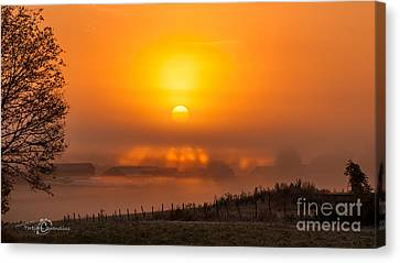 Foggy Morning Canvas Print by Torbjorn Swenelius