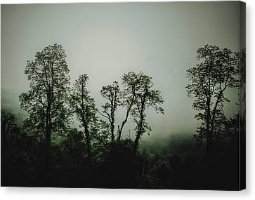 Foggy Mountain Morning At The Meadows Of Dan Canvas Print by John Haldane