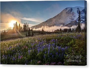 Washington Nationals Canvas Print - Foggy Rainier Sunset by Mike Reid
