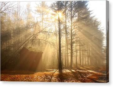 Foggy Rays And Forest Cabin Canvas Print by John Burk