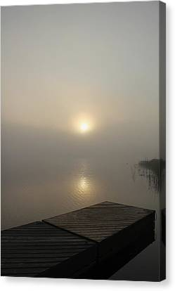 Foggy Reflections Canvas Print by Debbie Oppermann