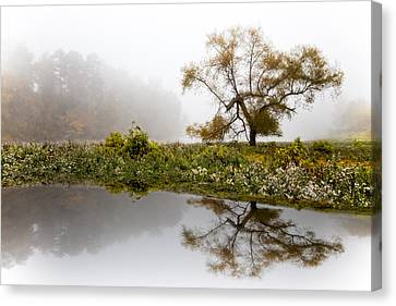 Foggy Reflections Landscape Canvas Print by Debra and Dave Vanderlaan