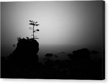 Foggy Sunrise Canvas Print by Jakub Sisak