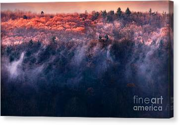 Foggy Sunset Canvas Print by HD Connelly