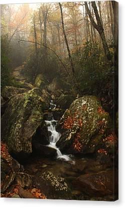 Canvas Print - Foggy Waterfall  by AR Annahita