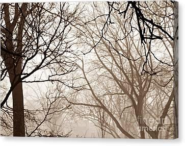 Foggy Day Digital Art Canvas Print - Foggy Winter Afternoon In Sepia by Sarah Loft