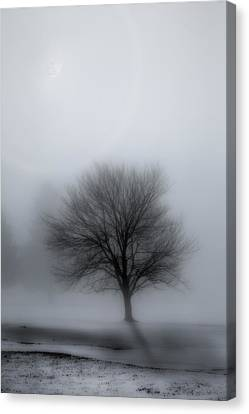 Glowing Moon Canvas Print - Foggy Winter Night by Bill Wakeley