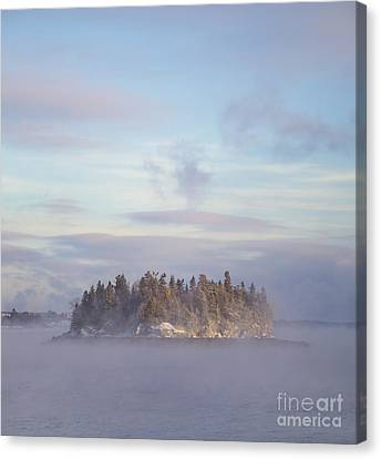 Fogscape Canvas Print by Evelina Kremsdorf