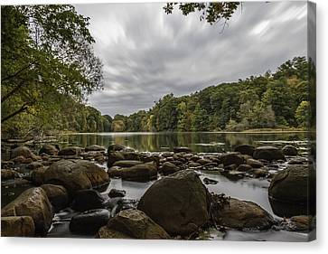 Canvas Print featuring the photograph Foliage by Anthony Fields