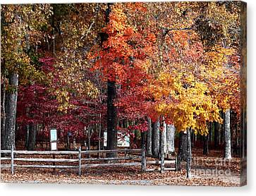 Foliage Colors Canvas Print by John Rizzuto