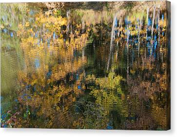 Foliage Scenery In Water Waves Reflection Canvas Print