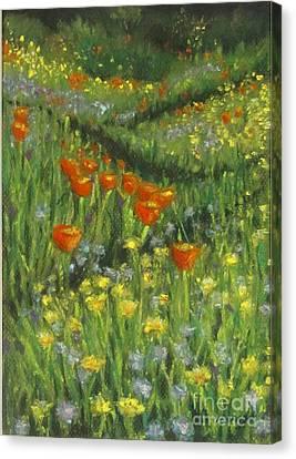 Poppy Trail Canvas Print