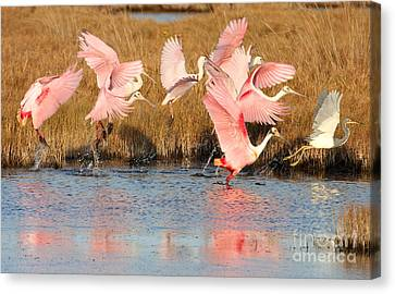 Follow The Leader Canvas Print by Jennifer Zelik