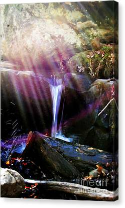 Follow  The Light Canvas Print by Peggy Franz