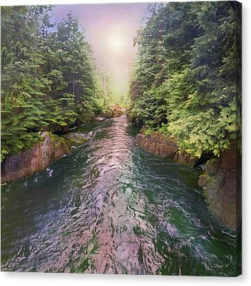 Following The Flow Canvas Print by David M ( Maclean )