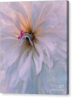 Canvas Print featuring the photograph Romance by Jean OKeeffe Macro Abundance Art