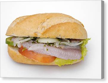 Fast Food Canvas Print - Food - Bread Roll With Fish by Matthias Hauser