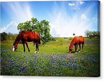 Food For The Soul Canvas Print