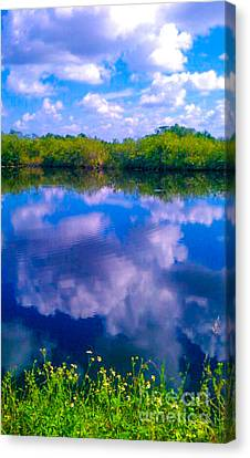 Fool's Paradise Canvas Print by Charlie Cliques