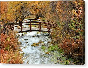 Foot Bridge At Cascade Springs. Canvas Print by Johnny Adolphson