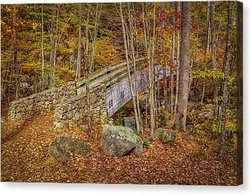 Foot Bridge Canvas Print by David Cote