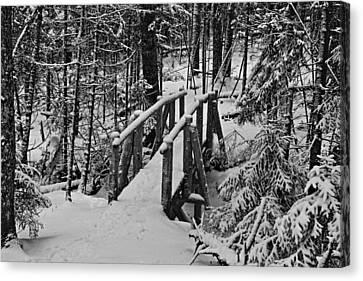 Foot Bridge In Winter Canvas Print by David Rucker