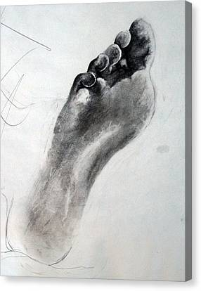 Foot Study Canvas Print by Corina Bishop