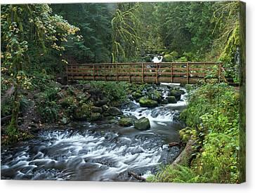 Footbridge Across Oneonta Creek Canvas Print by William Sutton