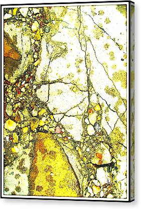 Footprint Of The Golden Time Canvas Print by Branko Jovanovic