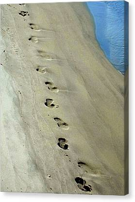 Footprints At Breech Inlet Canvas Print