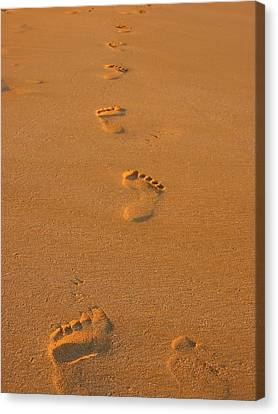 Footprints In The Sand Canvas Print by Andreas Thust