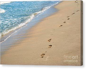 Footprints In The Sand Canvas Print by Juli Scalzi