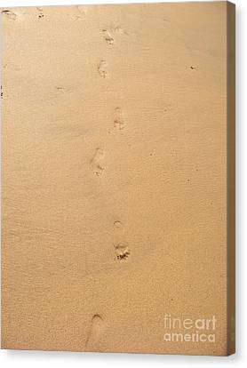 Footprints In The Sand Canvas Print by Pixel  Chimp